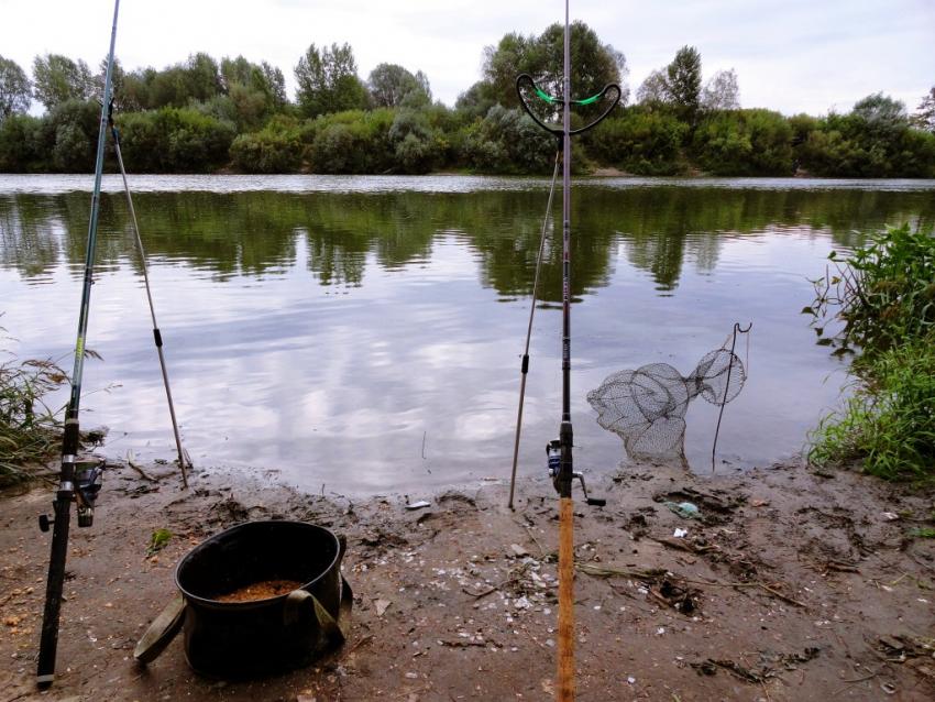 снять дом для рыбалки в воронежской области
