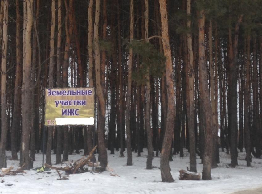 Деревенские сбежали в лес и потрахались фото 561-556