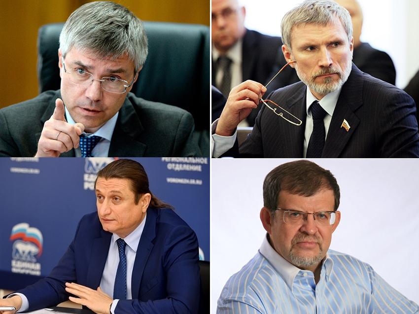 Топ-7 воронежских депутатов Госдумы по доходам за 2017 год