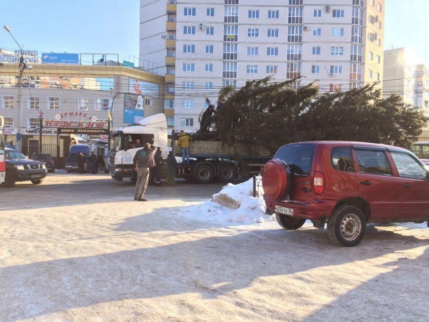 Новогодняя ёлка при транспортировке заблокировала движение надороге вВоронеже