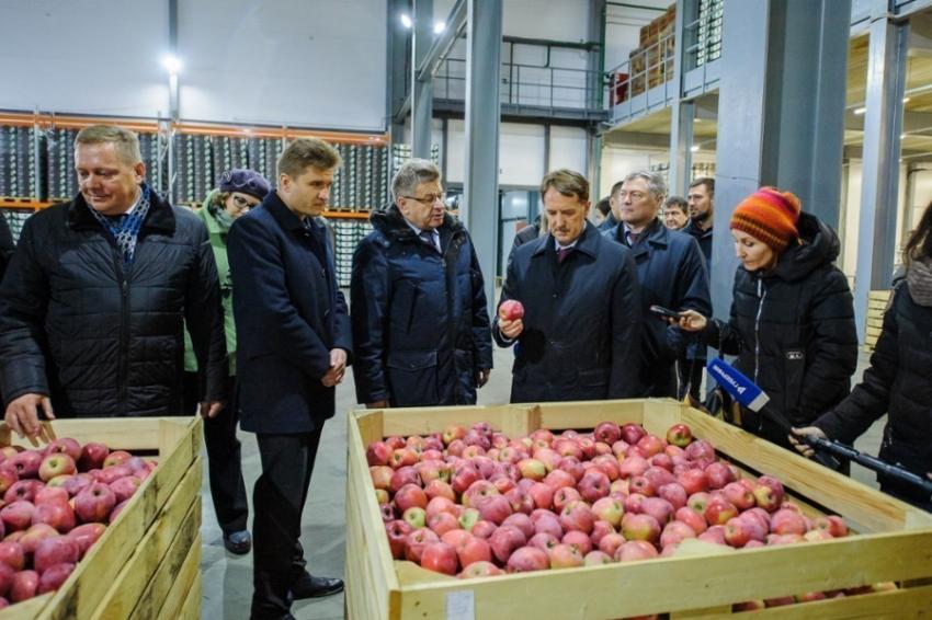 ВВоронежской области появилось новое фруктохранилище