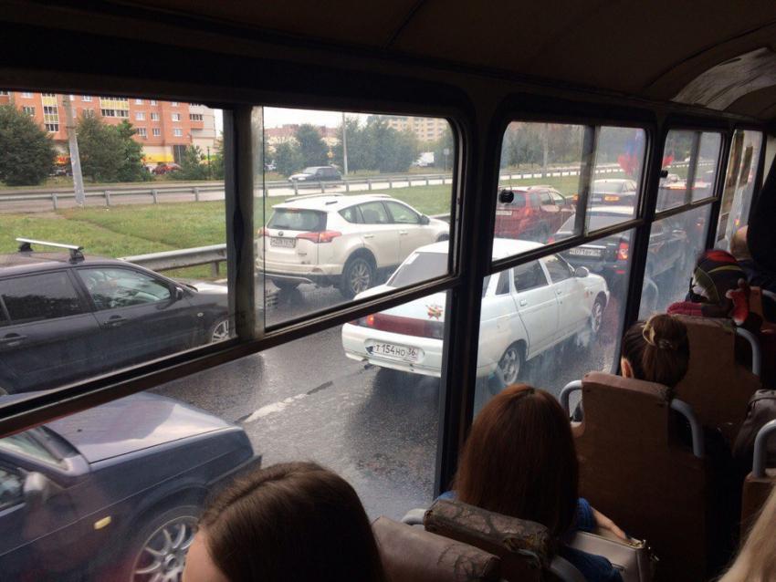 Воронеж присоединится к глобальной акции «День без автомобиля»