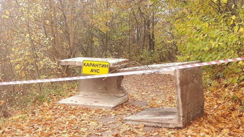 ВВоронежской области из-за АЧС запретили охоту