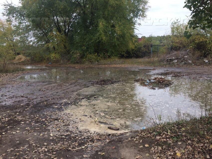 Воронежскому «Эколайнеру» грозит наказание засброс сточных вод