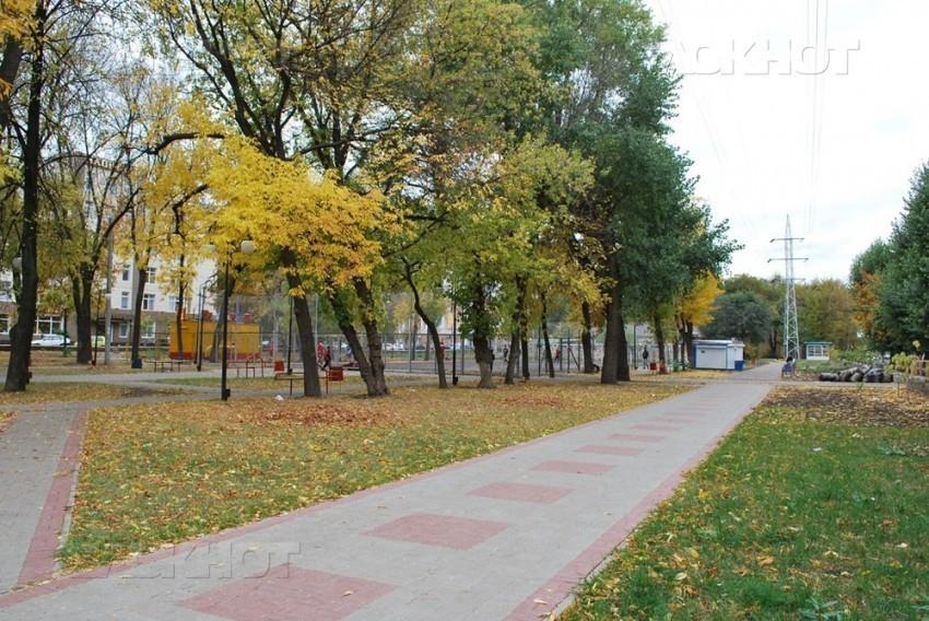 В Воронеже преобразят Комсомольский сквер и Университетскую площадь