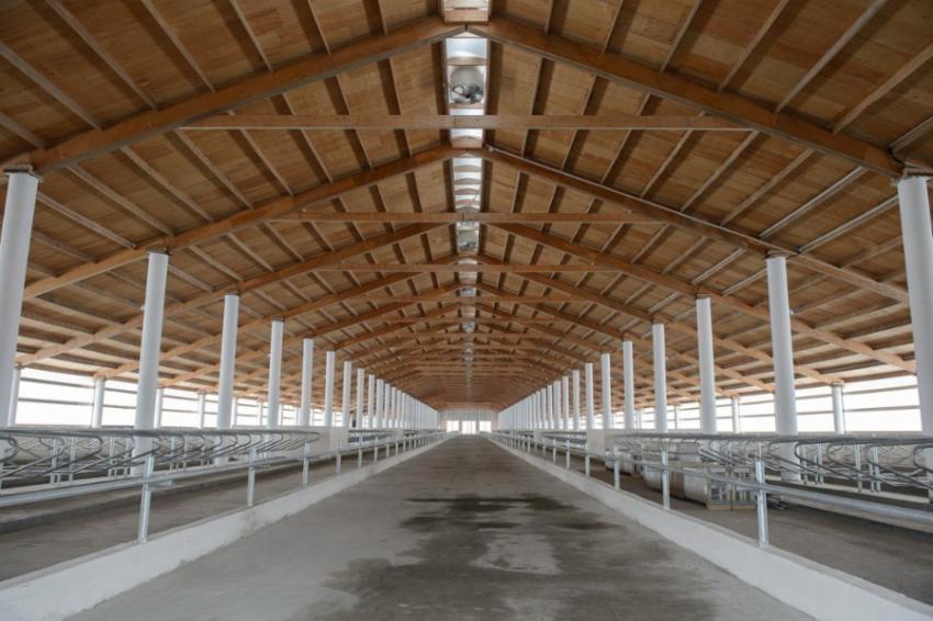 ВВоронежской области появится завод посушке биомасс для нужд АПК