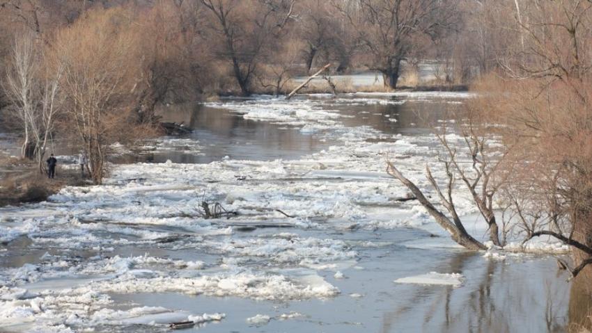 ВВоронежской области из-за паводка перекрыли мост