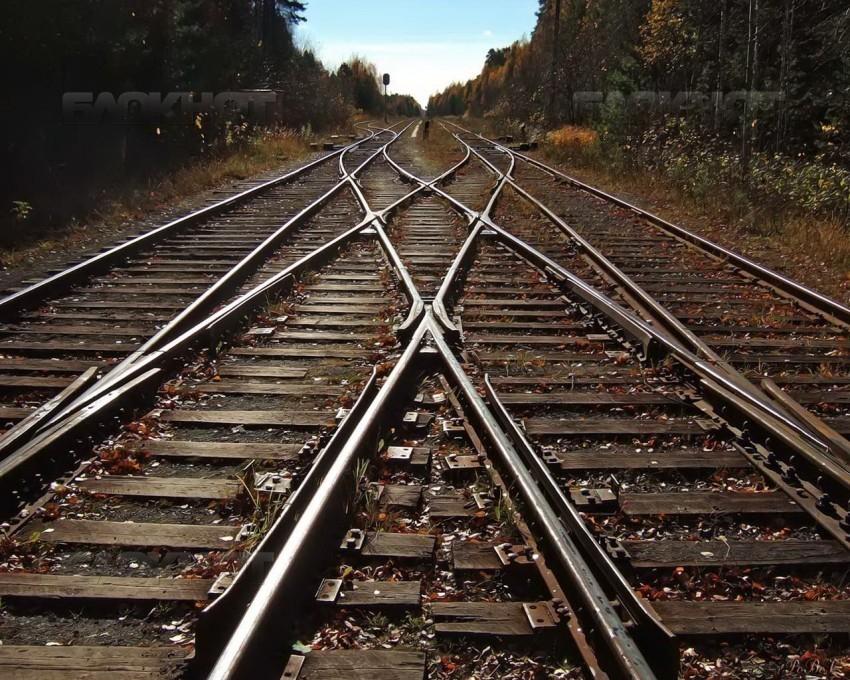 ВВоронежской области грузовой поезд задавил мужчину