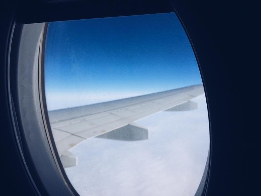 Из-за тумана «Аэрофлот» иS7 задержали свои рейсы изВоронежа в столицуРФ
