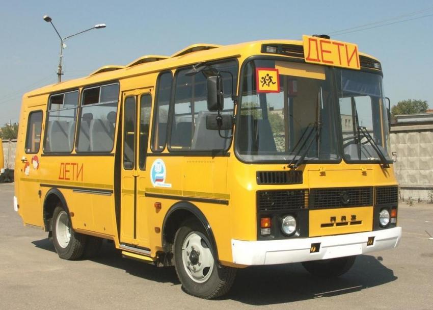 Дети натрассе: вВоронежской области уволились водители школьных автобусов
