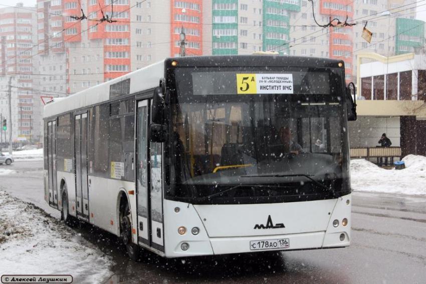 Парк динамо воронеж автобусы статью