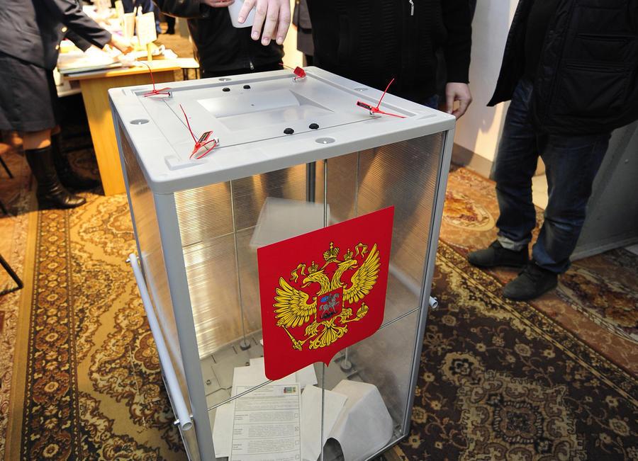 Треть избирателей Воронежской области уже пришла на выборы президента