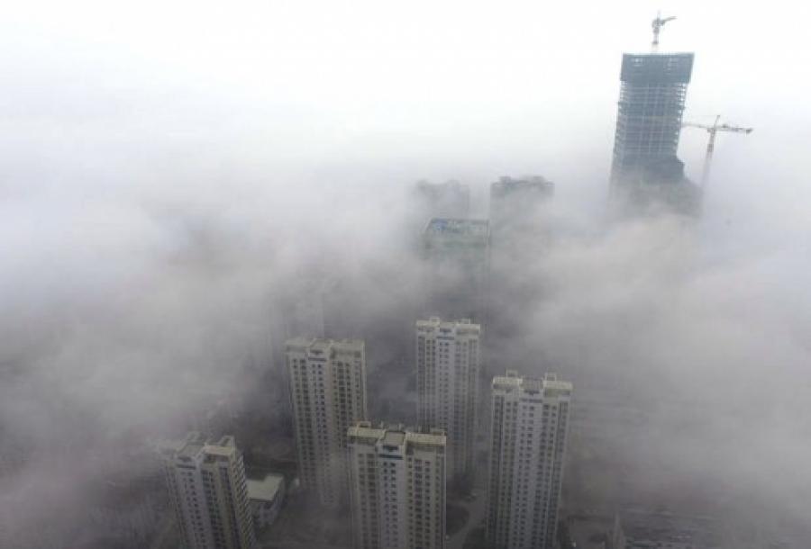Greenpeace рассказали, где в Воронеже самый грязный воздух