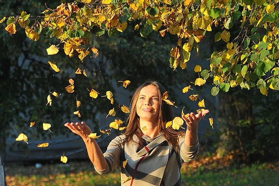 Волна субтропического воздуха вернет в Воронеж лето
