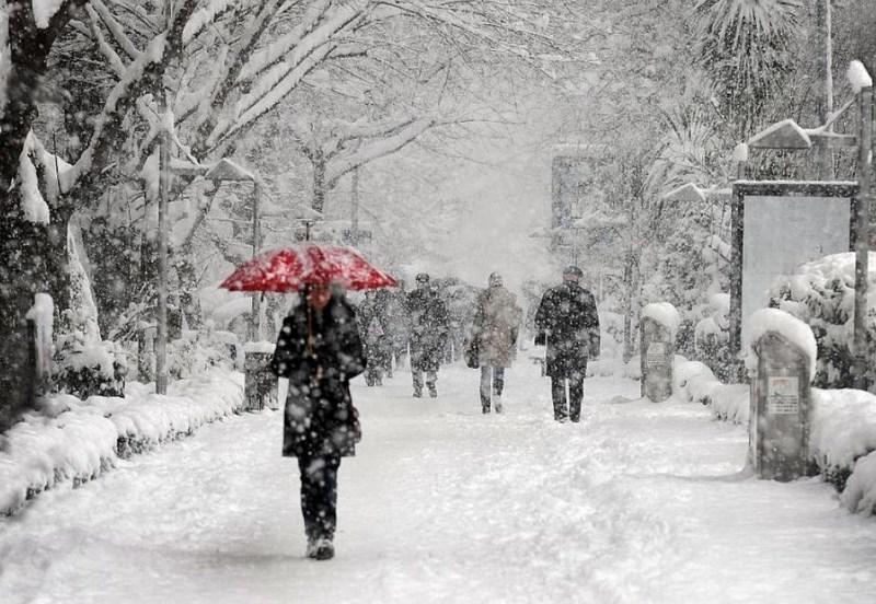 Мороз со снежным апокалипсисом придет в Воронеж на выходных