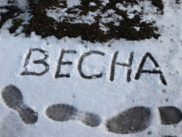 Стало известно, когда в Воронеж придет весна