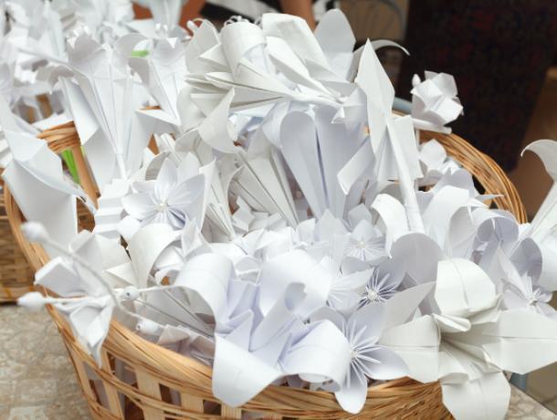 Волонтеры «Белого цветка» собрали 13,5 млн в Воронеже