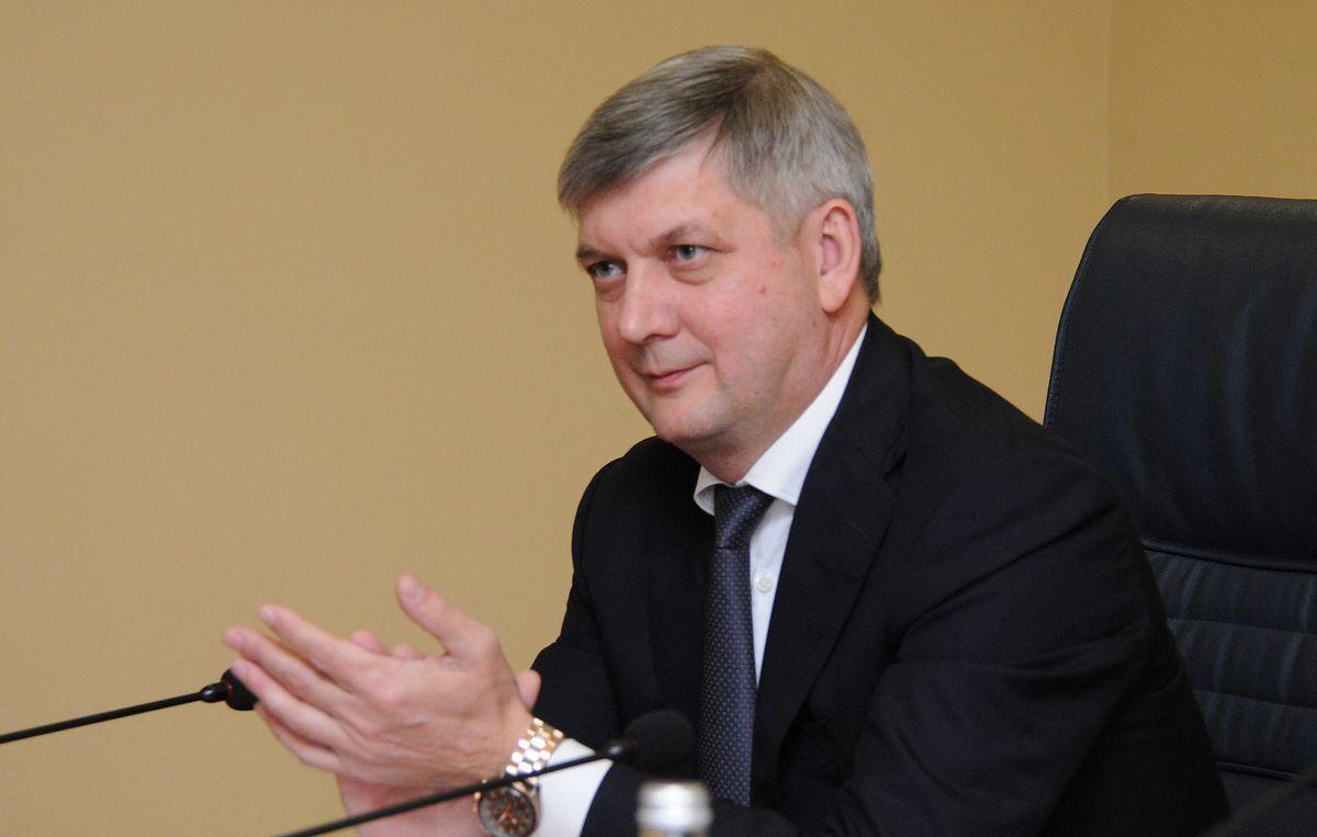 Губернатор Гусев пообещал аэропорт мирового класса в Воронеже