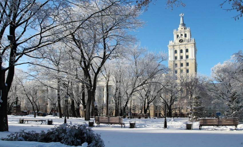 Синоптики рассказали, какая зима ждет воронежцев
