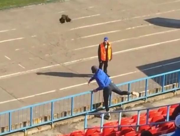 Живого петуха бросили в тренера на матче воронежского «Факела»
