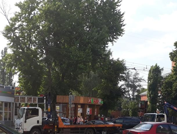 Парковку «не очень умного человека» показали на фото в Воронеже