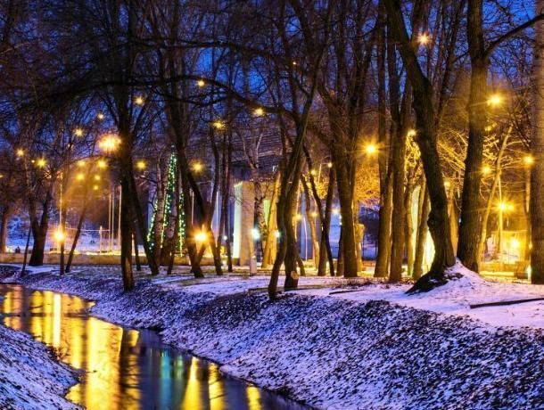 Воронежцам показали Центральный парк в стиле Ван Гога