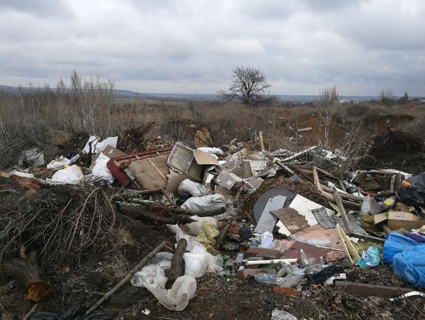 Общественники показали чудесное преображение проблемной свалки под Воронежем