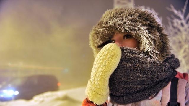 Арктический воздух принесет в Воронеж 22-градусные морозы