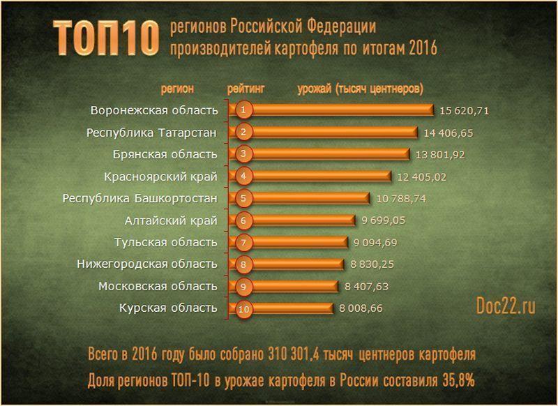 СМИ назвали Воронежскую область лидером среди регионов попроизводству картофеля