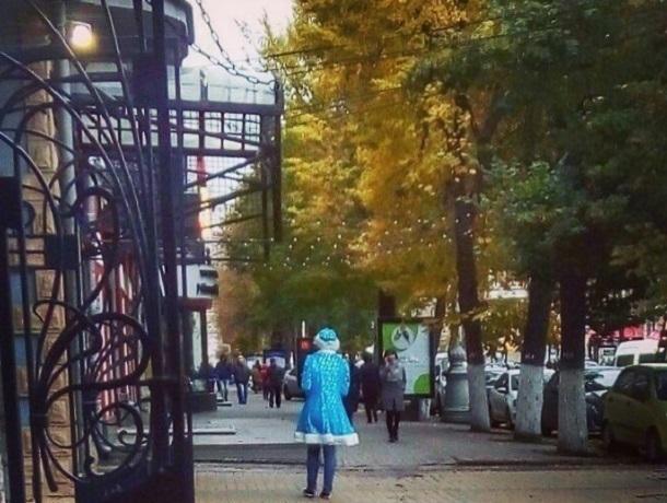 Воронежцев удивила, прогуливающаяся по городу Снегурочка