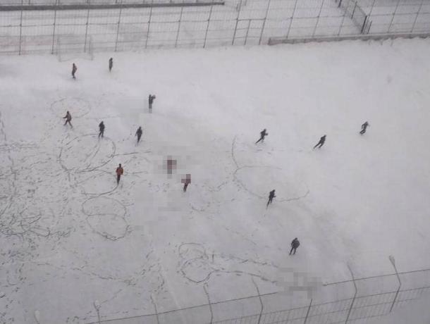 Огромные пенисы появились на спортивной площадке в Воронеже