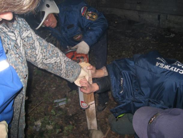 В Воронеже спасатели бензопилой помогли мальчику с гвоздем в руке