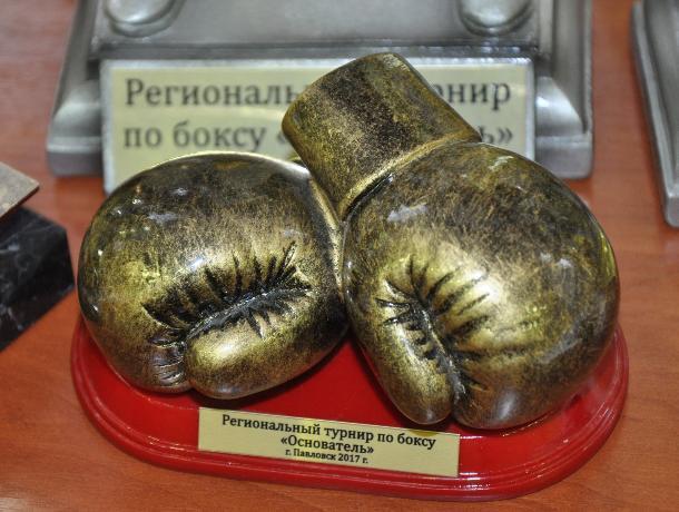 10 золотых медалей завоевали павловские боксеры на I воронежском региональном турнире «Основатель»