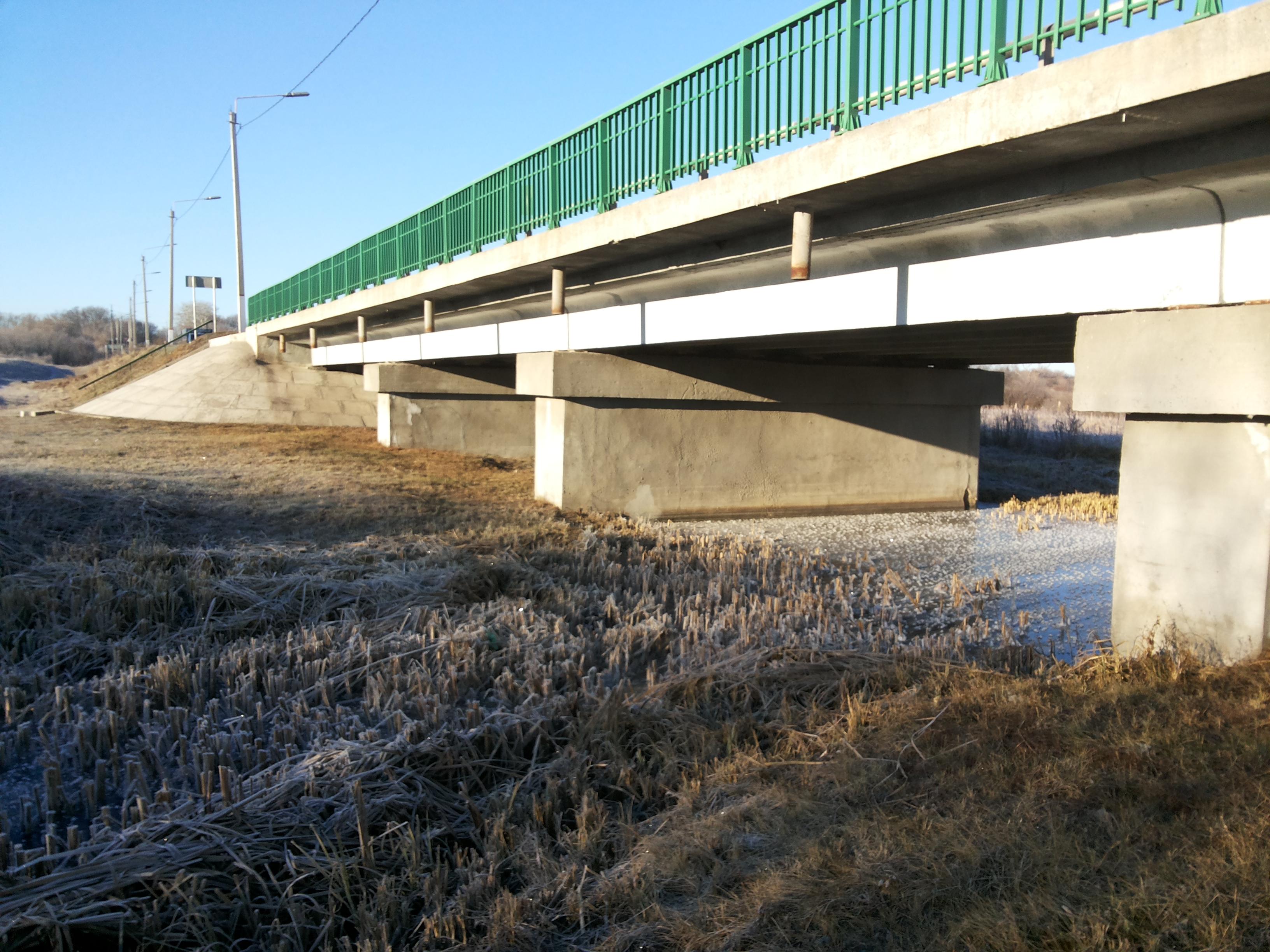 Для ремонта проблемного моста через Хопер под Воронежем не нашли подрядчика