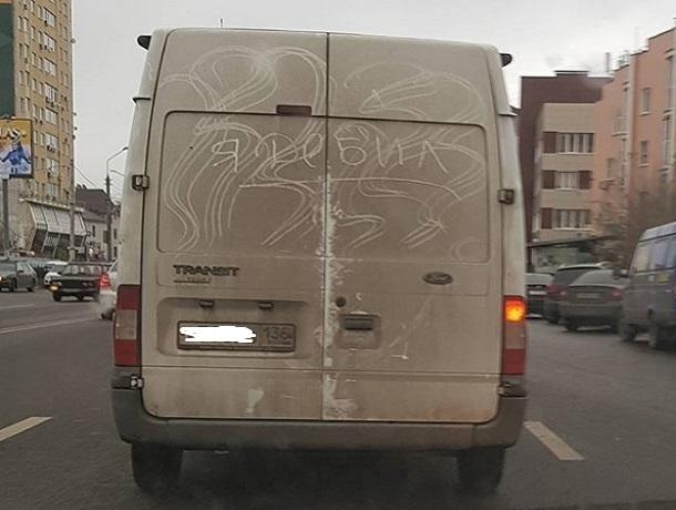 Водитель предупредил автомобилистов в Воронеже, что он дебил