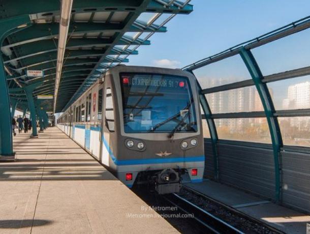 В Воронеже назвали 5 причин почему Северный мост непригоден для метро