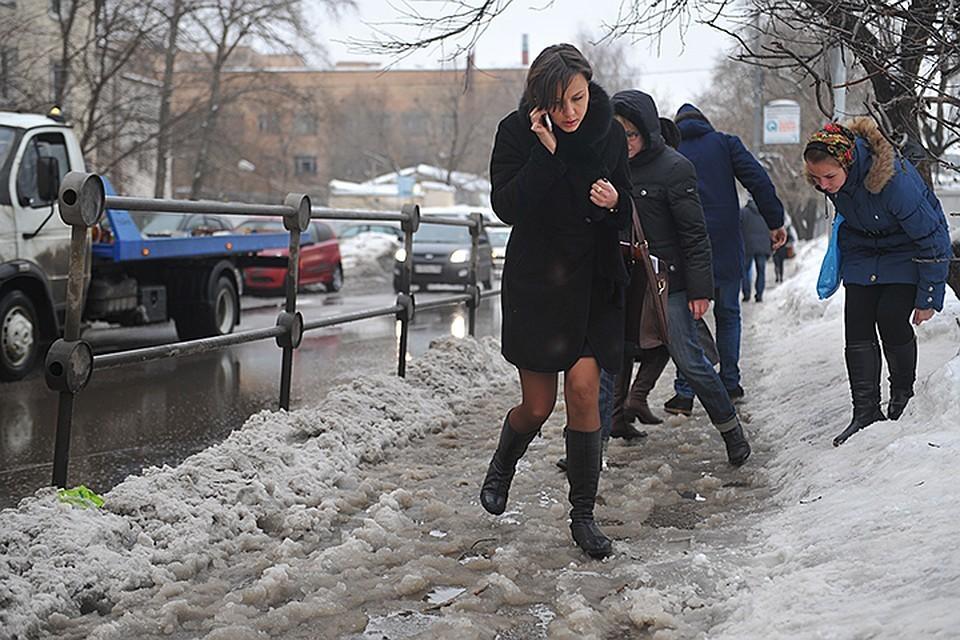 Теплый декабрь обещают синоптики в Воронеже