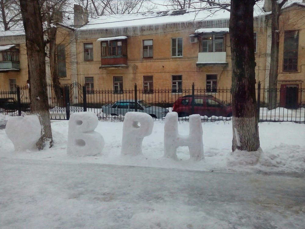 Воронежцы признались в любви к городу с помощью снега