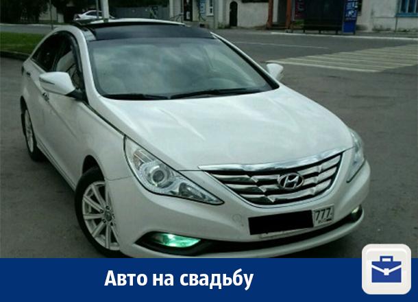 В Воронеже предлагают услуги авто на свадьбу