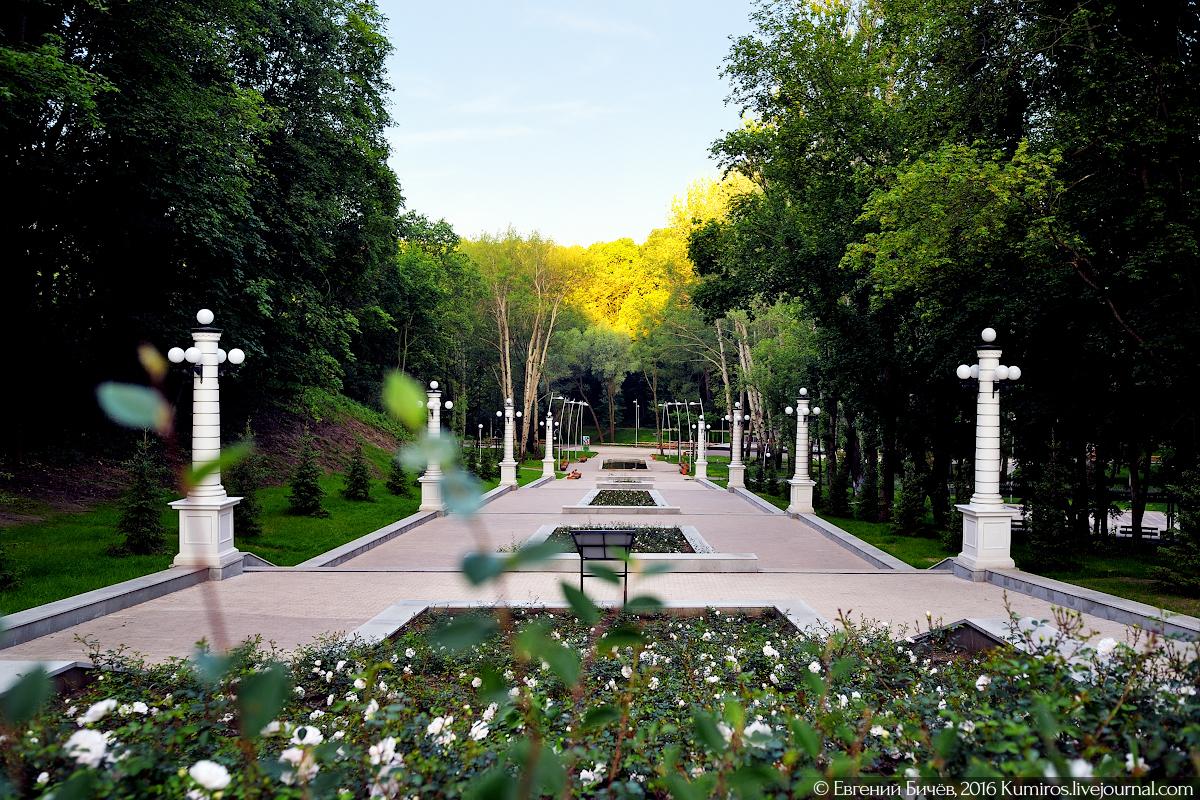 Проекты развития Центрального парка Воронежа разработают три компании